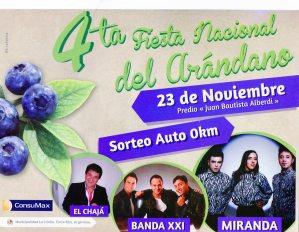promo fiesta 2014 bis