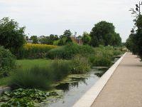 Parc de gerland megaphorbiaie