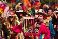 Karneval der Kulturen 2014