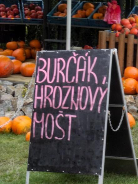 3-blog-burcak-1160602