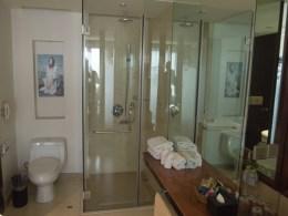 Edles, verglastes Badezimmer