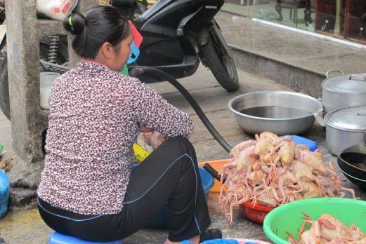 Å flå kyllinger på gata i Ha Noi Foto: Reiselykke