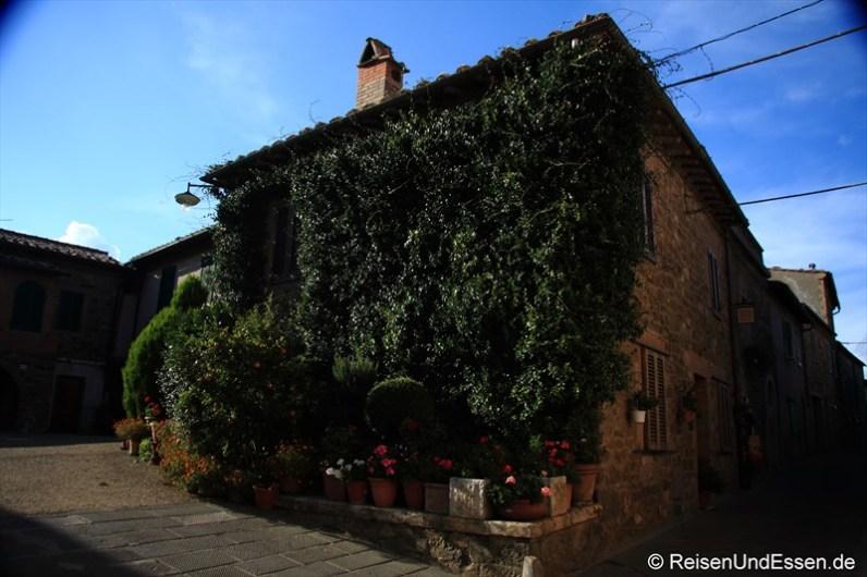 Haus in Montalcino