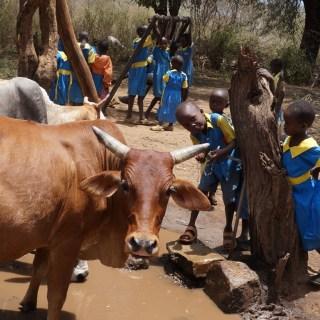 Children playing after school in Iten, Elgeyo -Marakwet County. [Picture: Henry Wahinya]