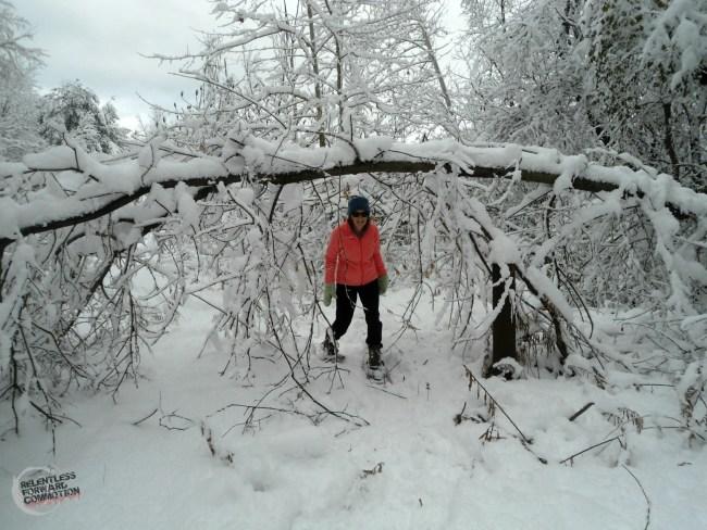 snowshoe 4