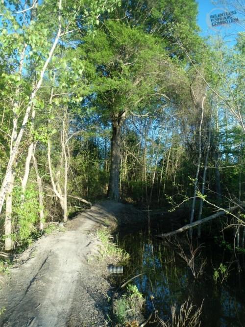 The Hulk Trail Water