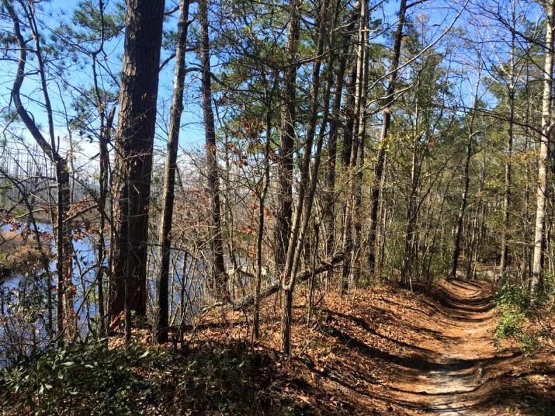 Trail Jam