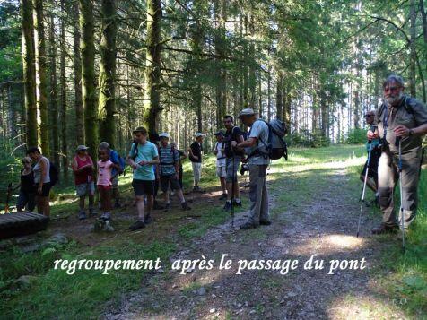 Marche pour touriste organisée par les Amis de la Nature (31)