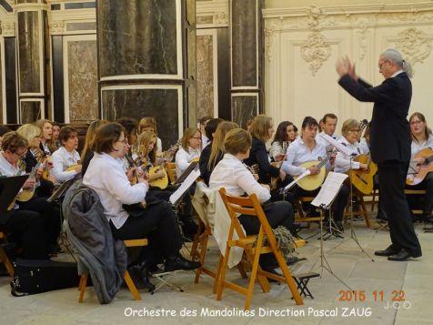 14 Orchestre Mandolines