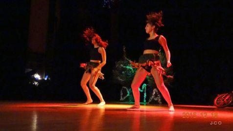 01 les danses (9)