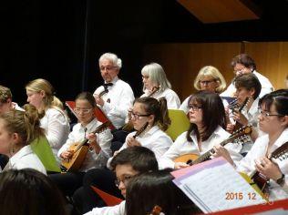 17 mandoliniste
