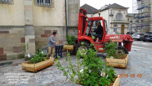 3 installation des jardinets