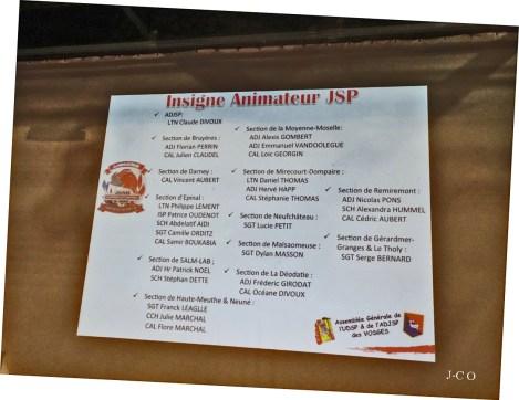 29 Insigne Animateur JSP