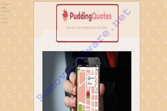 PuddingQuotes Ads remove