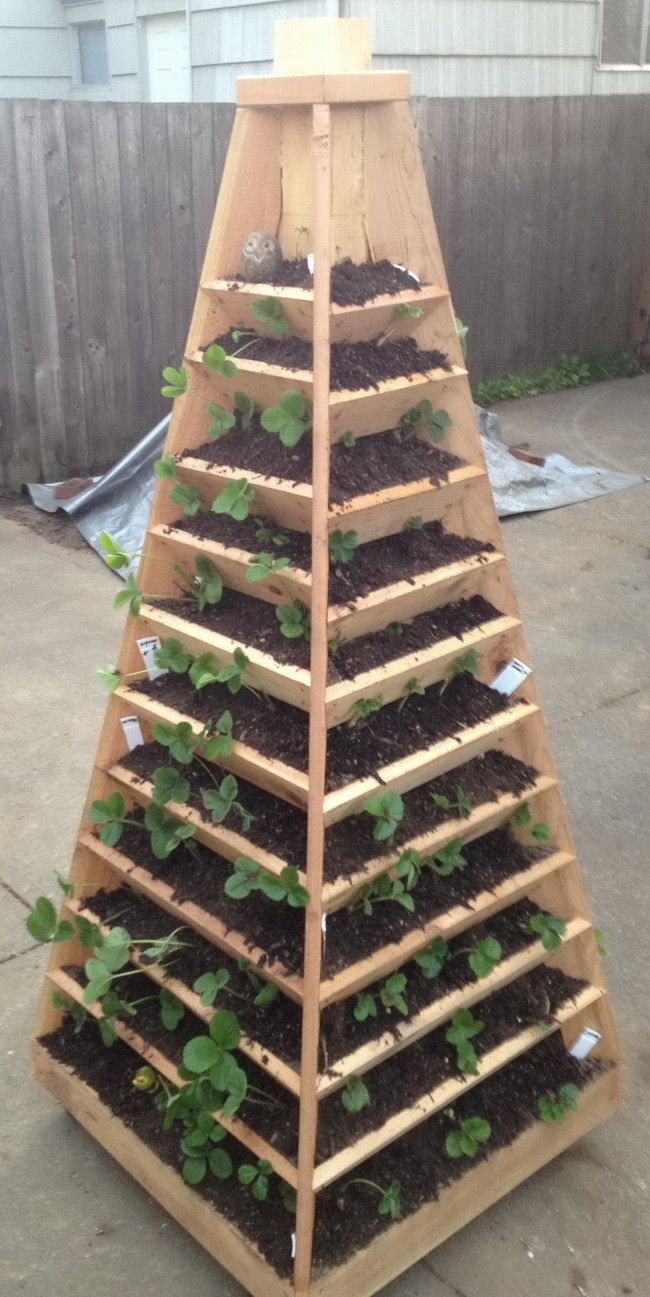 Fullsize Of Vertical Herb Garden Plans