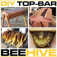 How To Build Your Own DIY Top Bar Beehive