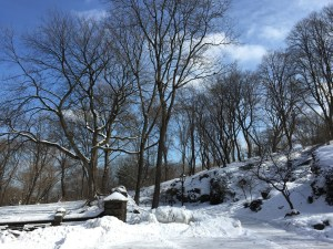 Taking the scenic route by  a snow-capped Harlem Hill