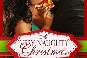 A Very Naughty Christmas – A hot new box set