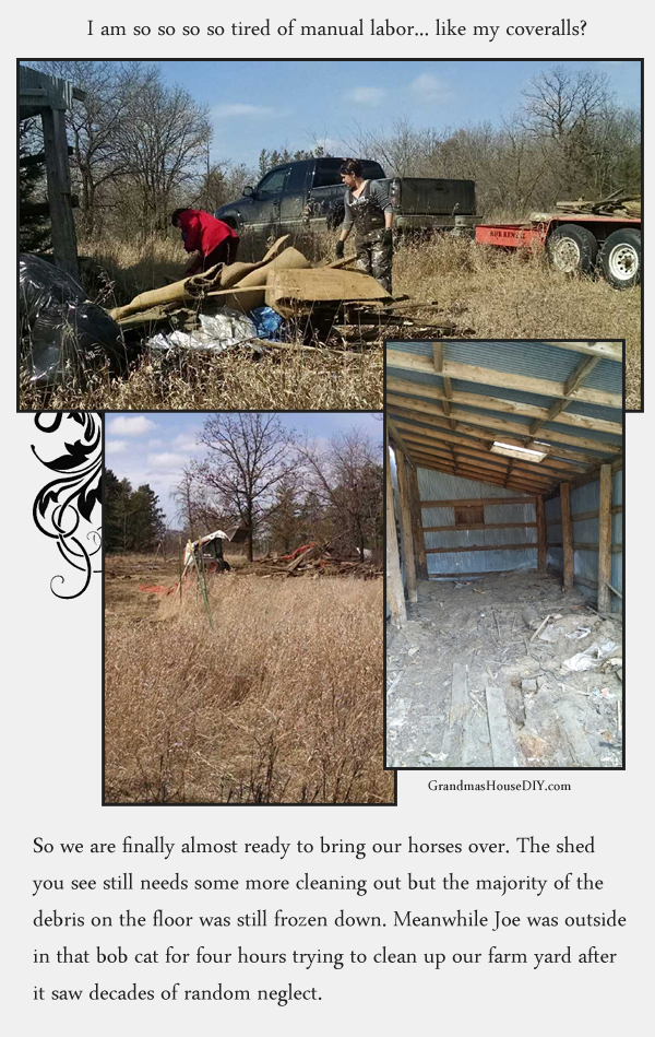 Cleaning up our old farm yard to bring my horses over again, using a bob cat and lots of manual labor.