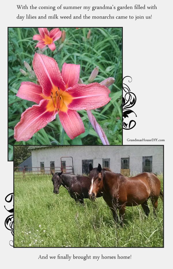 horses and day lillies