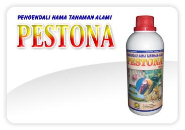 Jual Pestisida Organik PESTONA