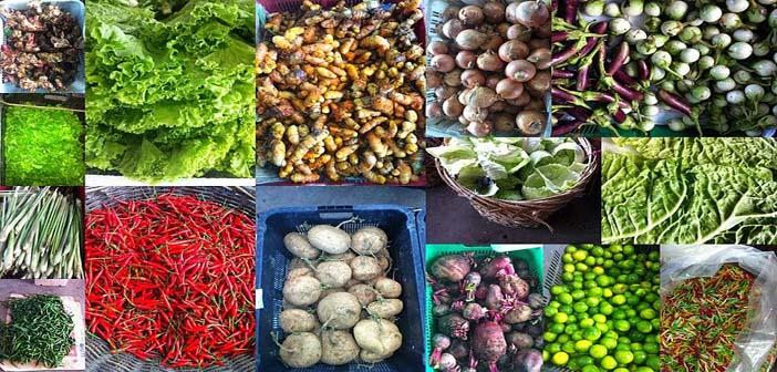 Teknologi Pertanian yang tepat mampu memberi Hasil Pertanian Terbaik