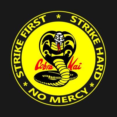 No Mercy Cobra Kai - Cobra Kai - T-Shirt | TeePublic
