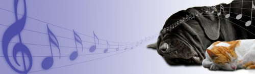 Medium Of Calming Music For Dogs
