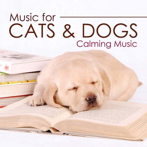 Medium Crop Of Dog Calming Music