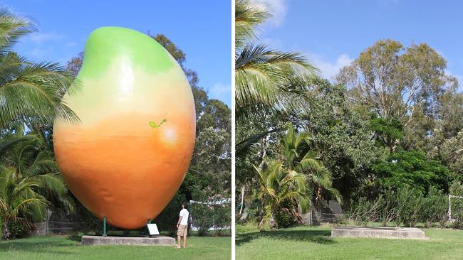 Now you see it, now you don't. Have you seen the Big Mango from Bowen?