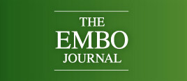 embo journal
