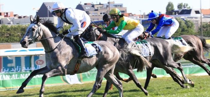 A közönség nagyon élvezte Belgiumban a rangos lovasversenyt