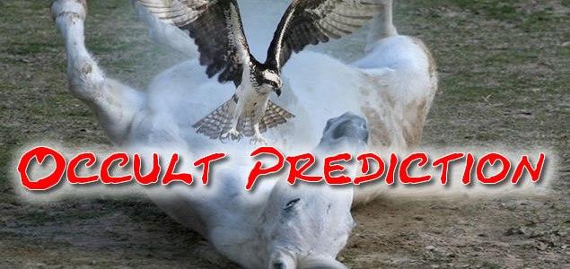 seahawks_win