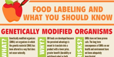 Food-Labeling-GMO-Infographic