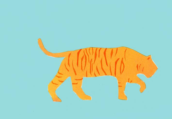 4_azul_tigre_livre