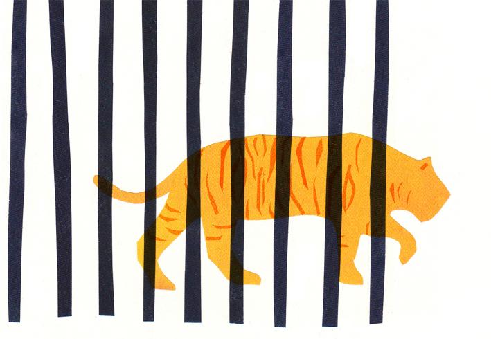 4_branco_tigre_preso