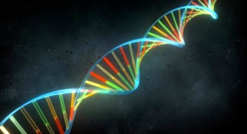 ADN_GCESAR[2]