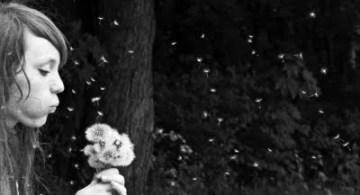 Soplando una flor de diente de león