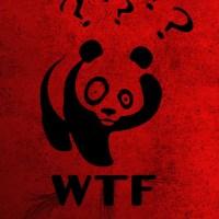 wtf-panda