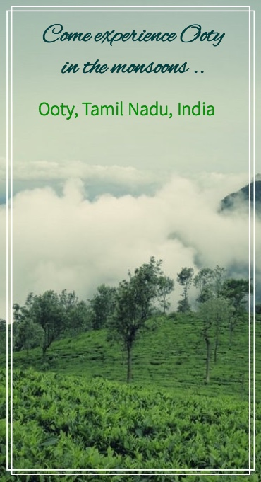 Ooty is a beautiful hill station in South India , in the state of Tamil Nadu. It is equally beautiful in monsoons when the rains start pouring