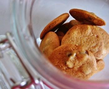 Leckere Vanille-Heidesand-Kekse fast ohne Kohlenhydrate