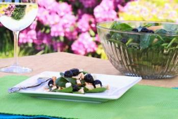Spinat-Blaubeeren-Salat mit nur 7 g Kohlenhydraten