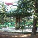 Mt. Mattsuminda Park  (1) (1024x755)
