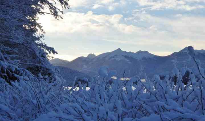 sitka-snowfall-14