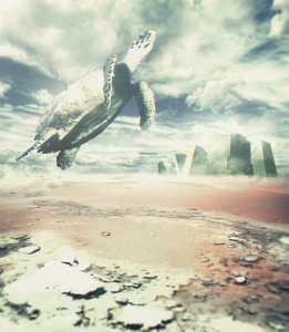 Into-the-sky-web