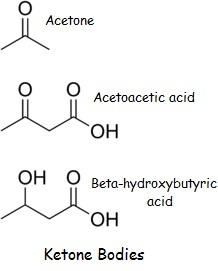 Supplemental Ketones: beta hydroxybutyrate is it worth it?
