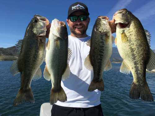 Southern California Fishing Guide Service - Lake Casitas 02/29/2016