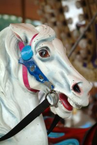 Painted Pony 2