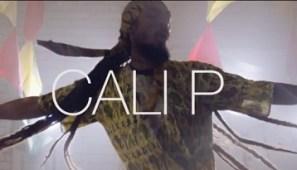 CaliPCarryLoad