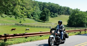 Pennsylvania Motorcycle Rides: Millers' Yellow Iris Farm